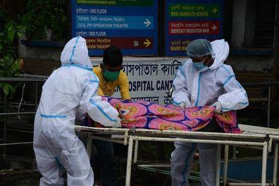 """La pandemia de COVID-19 """"podría haberse evitado"""", afirman"""