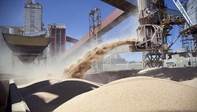 EEUU y Paraguay buscan facilitar el comercio agropecuario
