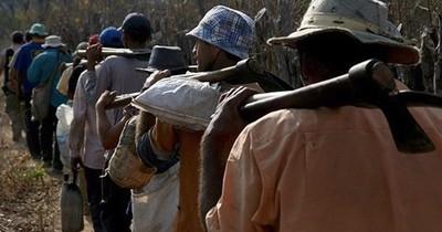"""La Nación / La miniserie de Amazon """"The Underground Railroad"""" aborda la esclavitud en EEUU"""