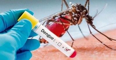 La Nación / Dengue: más de 1.700 personas infectadas en el país