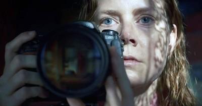 """La Nación / Netflix: Amy Adams atrapa como """"La mujer en la ventana"""""""