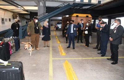Alerta aeropuerto: hoy fue cocaína, pero mañana podría ser una bomba