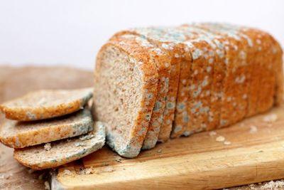 ¿Comer un pan mohoso podría realmente afectar tu salud?