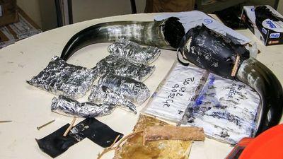 Senad detecta encomiendas con drogas en Aeropuerto