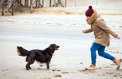 Cuidados de nuestras mascotas en días fríos