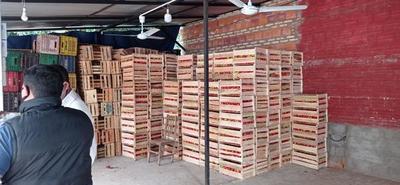 Mano dura al contrabando: Incautan 8 toneladas de tomate de contrabando en Ñemby