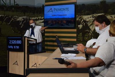Piemonte cerró un sábado a doble venta de invernada por más de US$ 1,2 millones