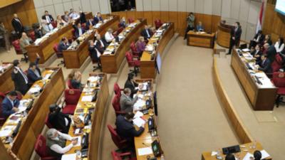 Votos del Frente Guasu definirán presidencia del Senado