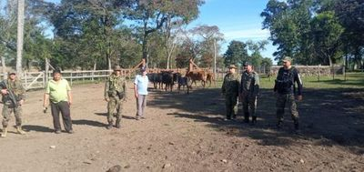 Recuperan siete animales vacunos hurtados de un campo comunal de Mbuyapey