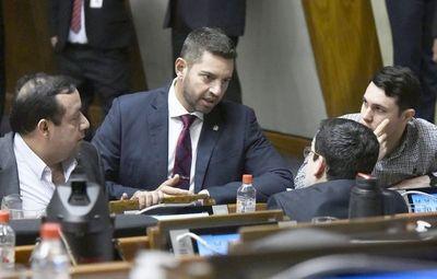 Diputados reclama al Senacsa millonario pago de gratificaciones a funcionarios