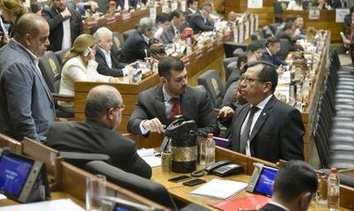 Diputados aprueban que por ley se audite a las binacionales y los colorados acatan