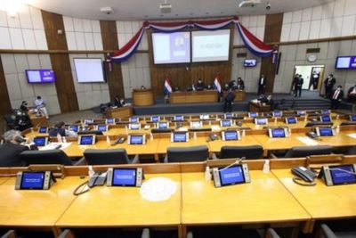 """Diputados aprueban fiscalización de las binacionales y crean comisión de control para la Ley """"COVID Gasto Cero"""""""