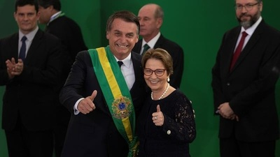 Brasil confirma que OMS reconoció seis Estados como libres de aftosa sin vacunación