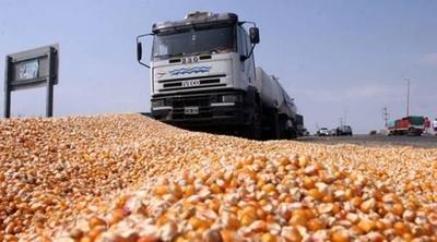 Paraguay reduce retención del IVA al transporte de granos