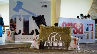 Mañana sábado, Altohondo y Ganadera CLS ofrecen terneras y vaquillas Brangus, Braford y Brahman