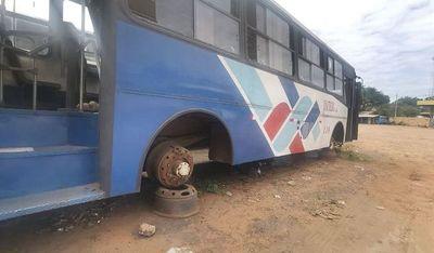 """Transportistas """"facturan"""" hasta por los buses sin ruedas, según nuevo informe"""