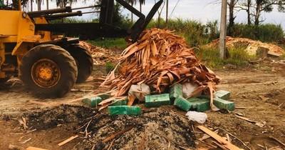 La Nación / Queman más de 900 kilos de marihuana prensada en Alto Paraná