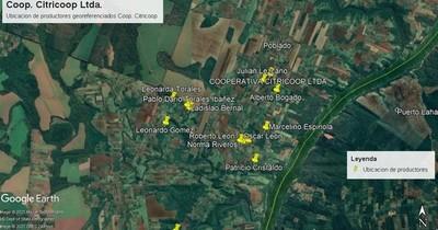 La Nación / Implementan sistemas de georreferenciamiento en la producción de yerba mate orgánica