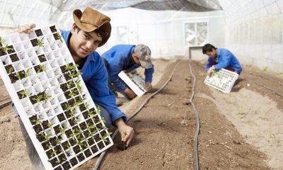 Banco multilateral destaca impacto positivo de programa paraguayo