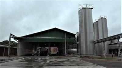 Día Mundial de la leche: en el Chaco Central acopian 15 millones de litros por mes