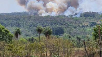 Diputados se ratifica en proyecto de ley de manejo integral del fuego