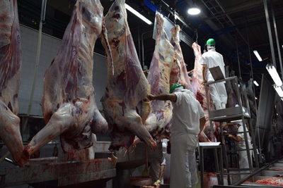 Paraguay suma 142.576 toneladas de carne bovina exportadas, un 45,8% más
