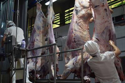 Faena en frigoríficos exportadores alcanzó 198.754 cabezas en mayo