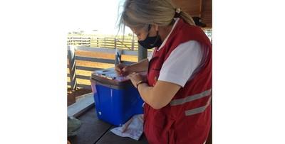 Paraguay registra un nuevo record de exportación de carne bovina de enero a mayo