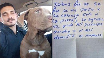 """Robó una perra y la devolvió con una carta: """"Perdón por el mal momento, es hermosa"""""""