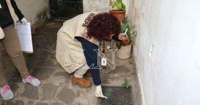 La Nación / Estudios realizados por Senepa revelan que criaderos están en casas habitadas