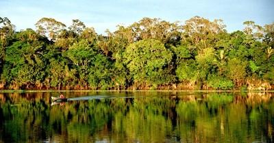 La Nación / Pacto Global y WWF-Py premiarán a empresas por sus iniciativas ambientales