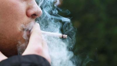 La nicotina es más adictiva que la cocaína y heroína – Prensa 5