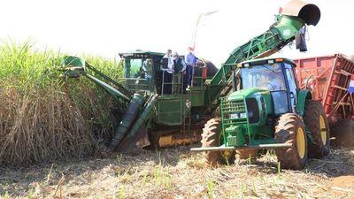 Pago a cañicultores se redujo y hay menos cultivos