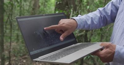 La Nación / El trabajo de conservar la vida en los últimos bosques de la Reserva San Rafael