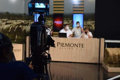 Piemonte despachó más de 600 cabezas de invernada en feria televisada