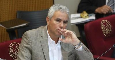 La Nación / Zavala es el opositor con más chances de presidir el Congreso, afirma Bacchetta