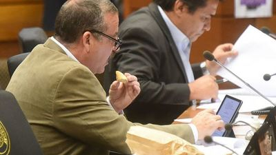 Lanzoni tendría menos chance que Ríos y Lugo en el Senado