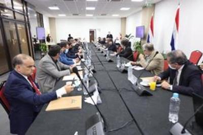 Nueva reunión del Grupo de Análisis con miras a la revisión del Anexo C