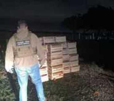 Incautan más de 7.000 kilos de tomate de presunto contrabando