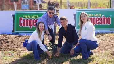 Regional Seguros y Yerba Mate Campesino plantan 200 lapachos