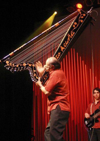 El arpa paraguaya celebra hoy su día