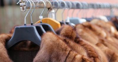 La Nación / Israel, primer país que prohíbe el comercio de pieles para la moda