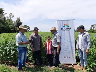 Denuncian que el MAG busca modificar proyecto de agricultura familiar para beneficiar a políticos