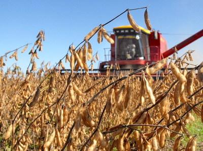 Cosecha de soja supera 10 millones de toneladas por buen manejo del cultivo