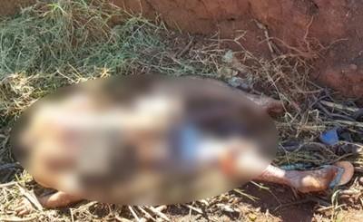 Intentó abusar de su exnovia y fue asesinado con disparos y machetazos