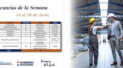 Vidriera de Empleo del Ministerio de Trabajo ofrece 46 puestos laborales esta semana