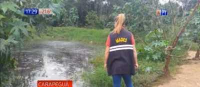 Carapeguá: Constatan irregularidades en un matadero