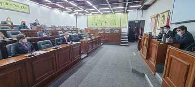 """Comisión especial de Covid gasto cero: """"Buscamos disminuir los procesos burocráticos"""""""