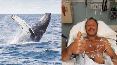 Una ballena se tragó a un hombre y luego lo escupió vivo