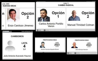PLRA elige candidatos en medio de crisis interna